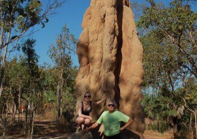 13-Termitenhuegel-auf-australisch