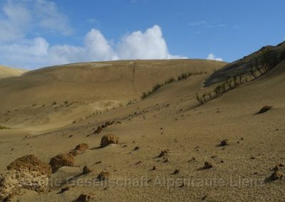 32 NZ Sandduenen