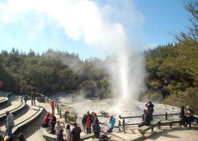46 Rotorua Gaysier