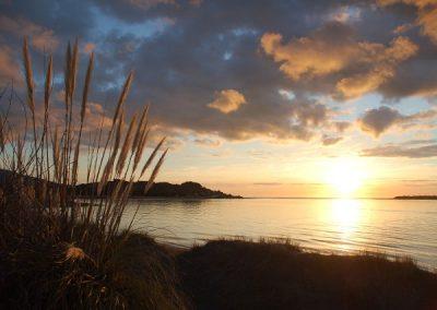 Neuseeland Strandstimmung (1)