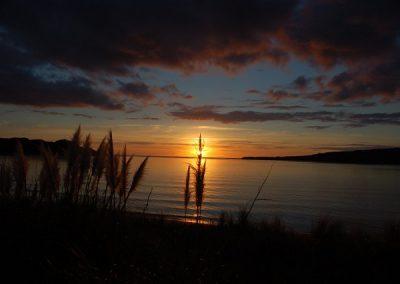 Neuseeland Strandstimmung (2)